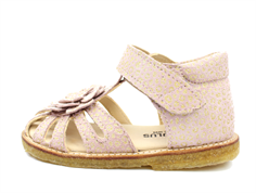 Angulus sandal powder leo with bow