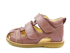 Angulus sandal plum with velcro