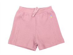 Joha shorts lilas cotton