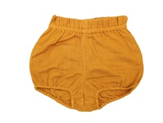 MarMar shorts/bloomers Pava pumpkin pie