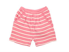Wheat Soft shorts navy