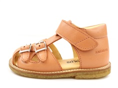 Angulus sandal peach with buckles and velcro